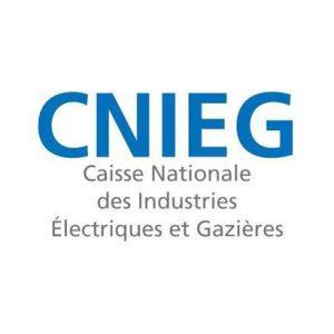 Logo CNIEG